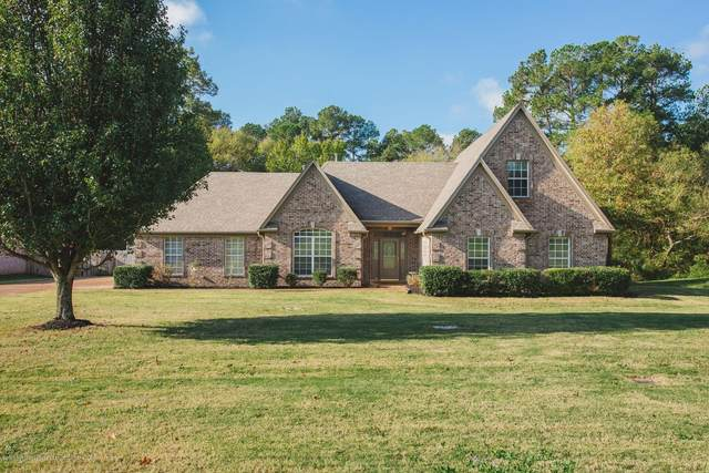 9676 Taylor Drive, Olive Branch, MS 38654 (MLS #332417) :: Signature Realty