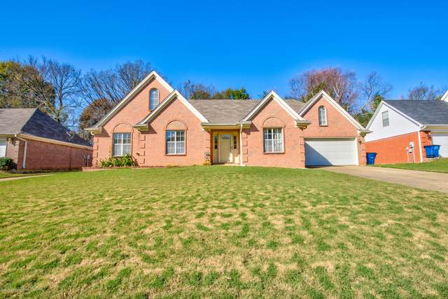 6249 Seminole Drive, Olive Branch, MS 38654 (MLS #332637) :: Signature Realty
