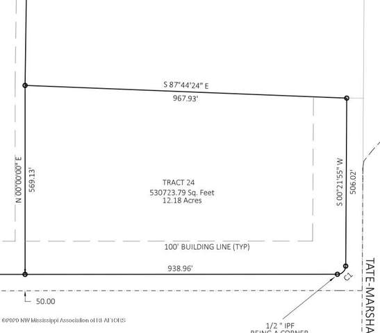 24 Sunset Drive, Coldwater, MS 38618 (MLS #332665) :: Signature Realty