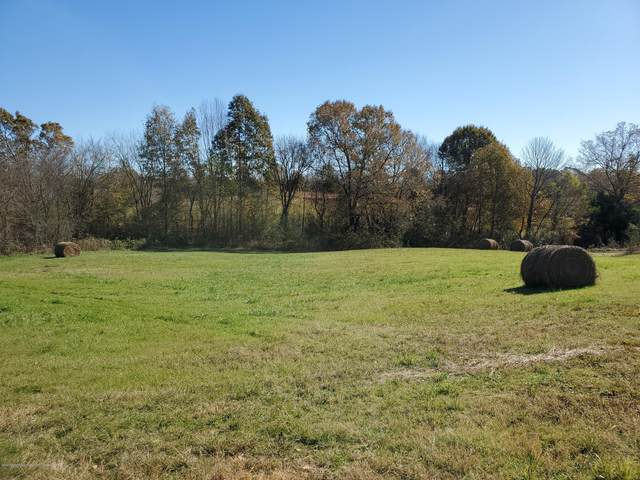20 Holly Springs Road, Byhalia, MS 38611 (MLS #332678) :: Gowen Property Group | Keller Williams Realty