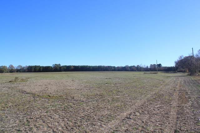 2 Highway 4, Holly Springs, MS 38635 (MLS #332701) :: Signature Realty