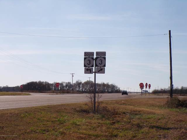 00001 Corner Of Highway 3 And 304, Robinsonville, MS 38664 (MLS #332782) :: Signature Realty