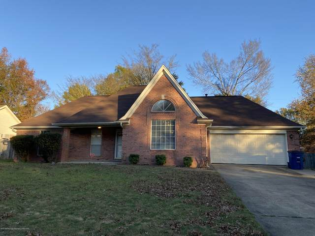 6224 Seminole Drive, Olive Branch, MS 38654 (MLS #332792) :: Signature Realty