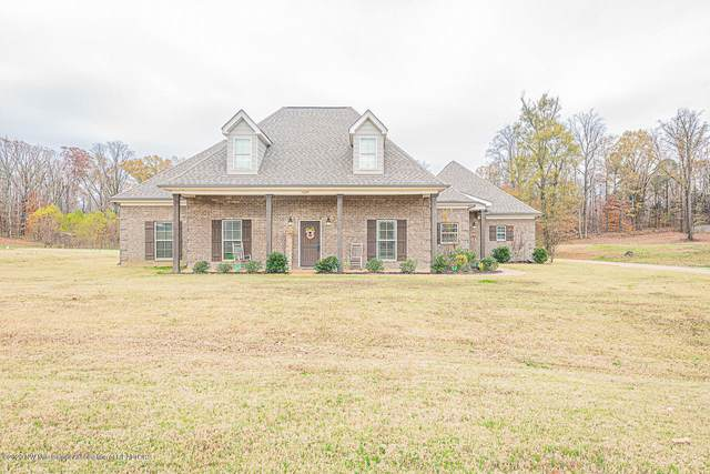 10095 Emerald Forest Drive, Hernando, MS 38632 (MLS #332866) :: Signature Realty