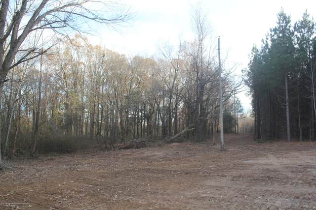 252 Hogan Road, Holly Springs, MS 38635 (MLS #332921) :: The Live Love Desoto Group