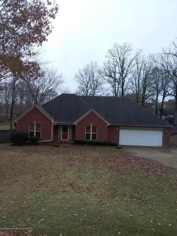 9675 Nolan Road, Olive Branch, MS 38654 (MLS #332928) :: The Live Love Desoto Group