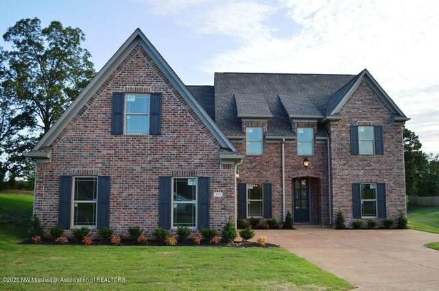 3039 Fossil Hill Drive, Hernando, MS 38632 (MLS #332944) :: The Live Love Desoto Group