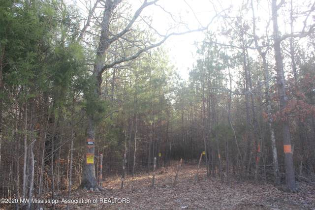 0 Valley View, Byhalia, MS 38611 (MLS #333198) :: The Live Love Desoto Group