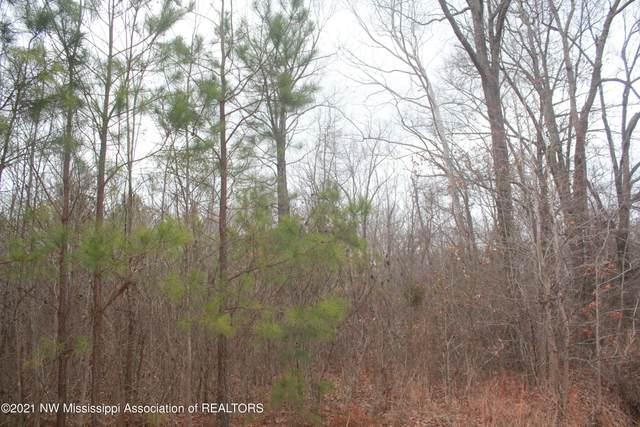 75 Deer Creek Road, Byhalia, MS 38611 (MLS #333596) :: Signature Realty
