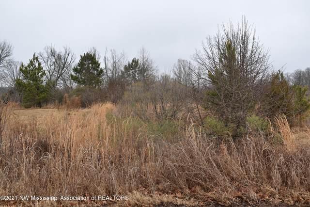 164 Oak Ridge Lakes Drive, Coldwater, MS 38618 (MLS #333657) :: The Live Love Desoto Group