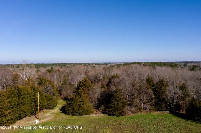 705 Wall Hill Farms, Byhalia, MS 38611 (MLS #333712) :: Signature Realty