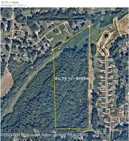 1738 Mcingvale Road, Hernando, MS 38632 (MLS #333867) :: Gowen Property Group | Keller Williams Realty