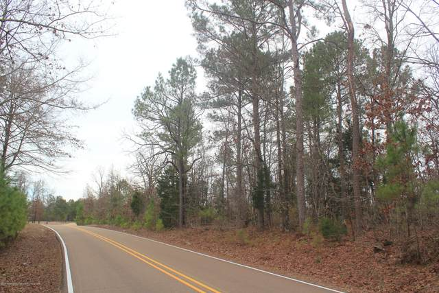 6 Co Rd 204, Abbeville, MS 38601 (MLS #334088) :: Signature Realty