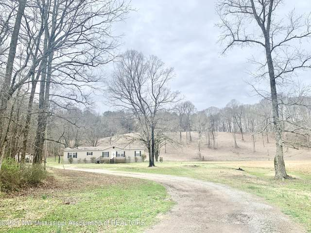 1116 County Road 2, Hickory Flat, MS 38633 (MLS #334358) :: Signature Realty