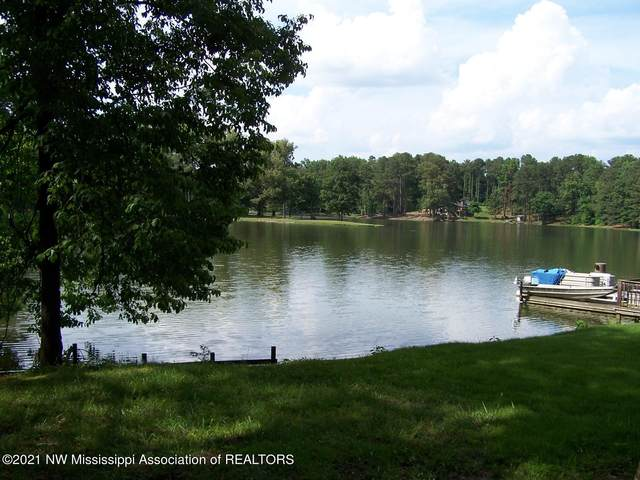 12 Boka Cove, Hernando, MS 38632 (MLS #334393) :: Gowen Property Group | Keller Williams Realty