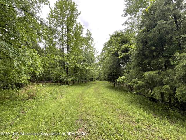 Lot 3 Stable Road, Hernando, MS 38632 (MLS #334428) :: The Live Love Desoto Group