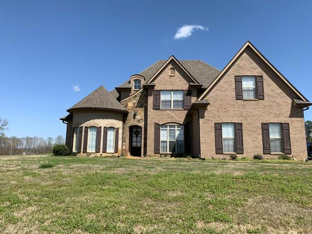 9654 Trenton Trail, Olive Branch, MS 38654 (#334666) :: Area C. Mays | KAIZEN Realty