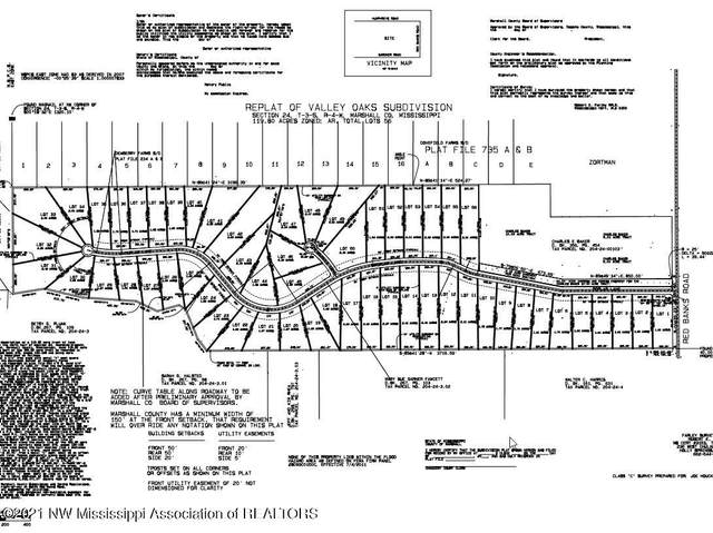 8 Polar Lane, Red Banks, MS 38661 (MLS #334740) :: Gowen Property Group | Keller Williams Realty
