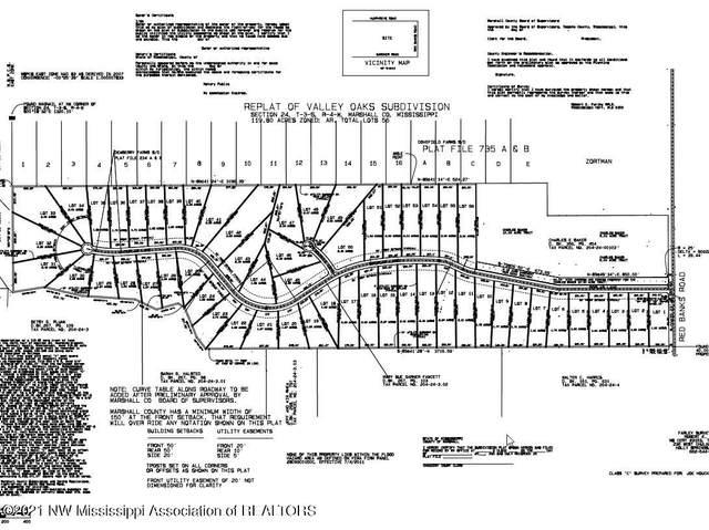 9 Polar Lane, Red Banks, MS 38661 (MLS #334741) :: Gowen Property Group | Keller Williams Realty