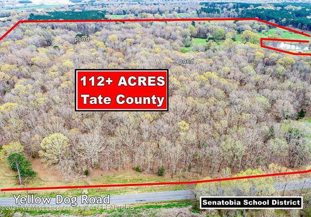 3407 Yellow Dog Road, Senatobia, MS 38668 (#334816) :: Area C. Mays | KAIZEN Realty