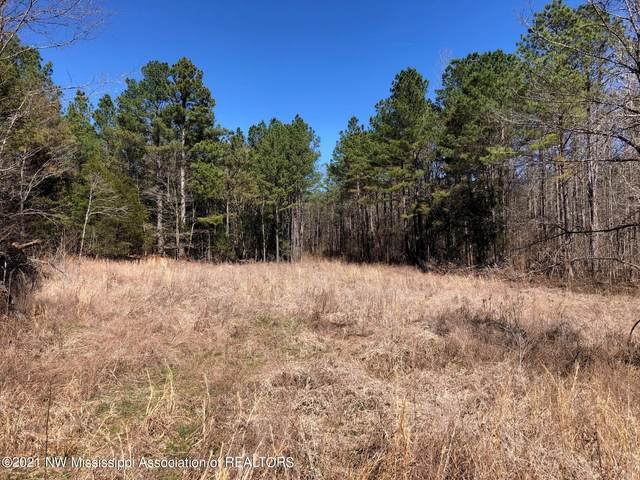 2 Co Rd 325, Big Creek, MS 38914 (#334895) :: Area C. Mays | KAIZEN Realty