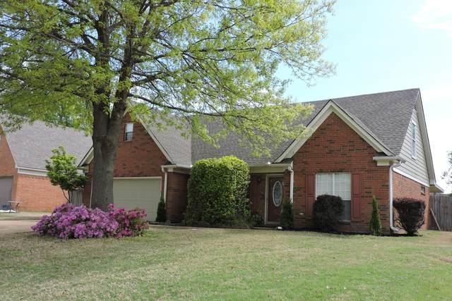 9416 E Geneva Loop, Olive Branch, MS 38654 (#334937) :: Area C. Mays | KAIZEN Realty
