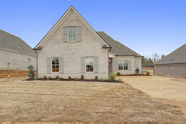 519 Arbor Pointe Boulevard, Hernando, MS 38632 (MLS #335261) :: Signature Realty
