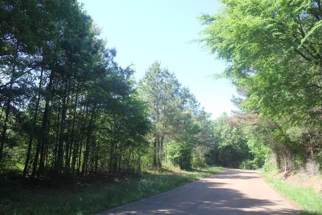 601 Brownlee Road, Sarah, MS 38665 (MLS #335344) :: Signature Realty