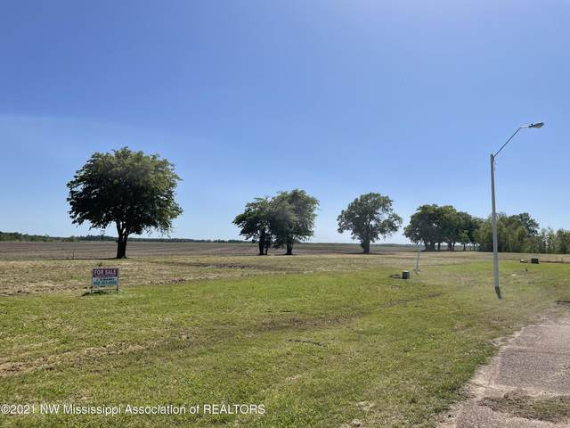 826 Nolan Drive, Tunica, MS 38676 (MLS #335388) :: Signature Realty