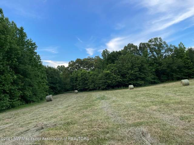 30 Wildcat Bottom Road, Red Banks, MS 38661 (MLS #335856) :: The Live Love Desoto Group