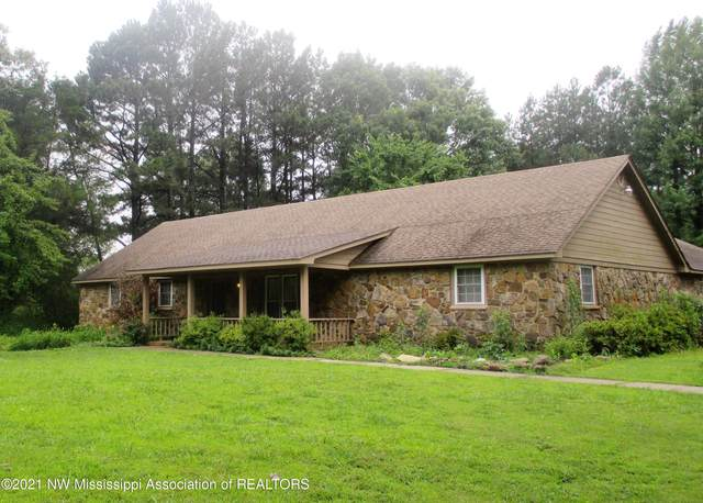 9105 Hunters Run Drive, Olive Branch, MS 38654 (MLS #335908) :: The Home Gurus, Keller Williams Realty