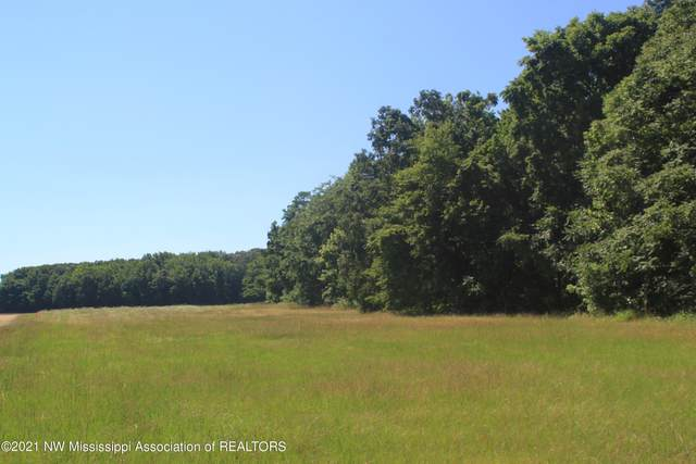 2 Boswell Road, Holly Springs, MS 38635 (MLS #336019) :: The Live Love Desoto Group