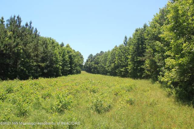 4300 S Red Banks Road, Byhalia, MS 38611 (MLS #336033) :: The Live Love Desoto Group
