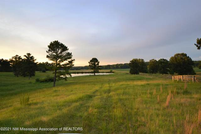 79 Tate Marshall Road, Coldwater, MS 38618 (MLS #336421) :: The Justin Lance Team of Keller Williams Realty