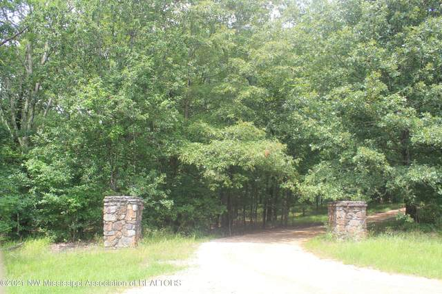 5245 Polk Lane, Olive Branch, MS 38654 (#336477) :: Area C. Mays | KAIZEN Realty