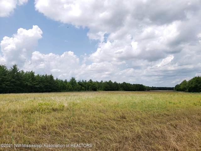 1 Bobo Road, Batesville, MS 38606 (MLS #336709) :: Signature Realty