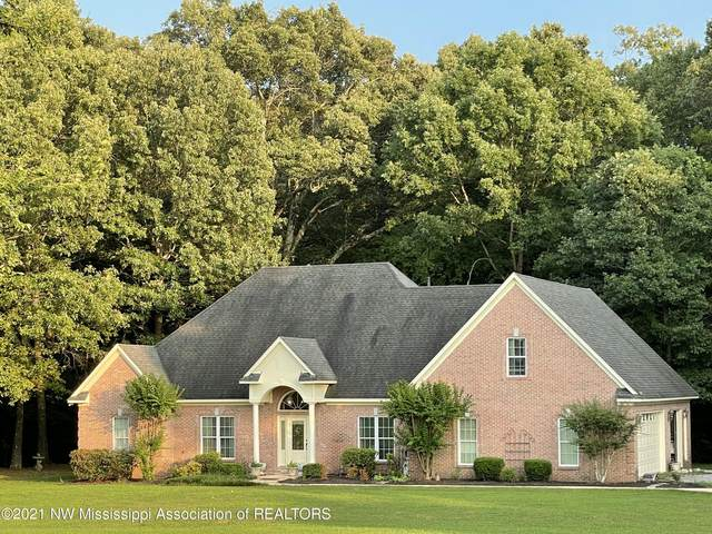 6163 Curbo Lane, Olive Branch, MS 38654 (MLS #336885) :: Signature Realty