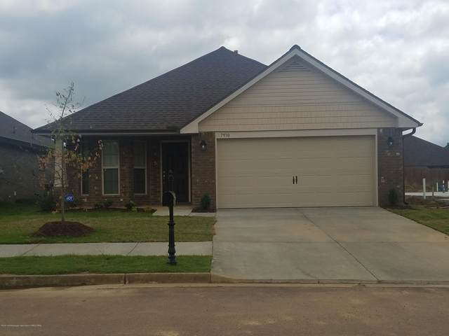 7804 Ferndale Drive, Olive Branch, MS 38654 (MLS #337251) :: Signature Realty