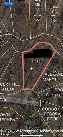 11239 Loch Katrine Cove, Hernando, MS 38632 (MLS #337287) :: The Home Gurus, Keller Williams Realty