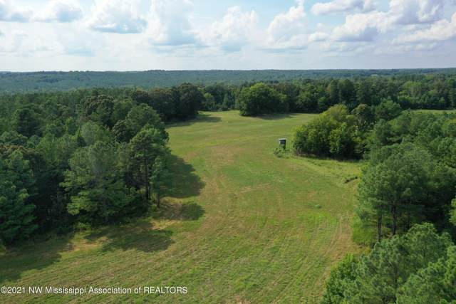 1101 Odell Road, Holly Springs, MS 38635 (MLS #337464) :: Signature Realty