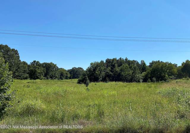 14 Highway 306, Coldwater, MS 38618 (MLS #337669) :: The Live Love Desoto Group