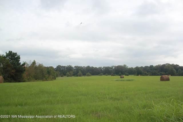 5 Dean Road, Lake Cormorant, MS 38641 (MLS #337674) :: The Home Gurus, Keller Williams Realty