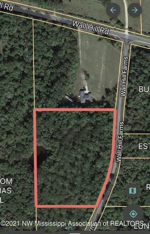 Lot 14 Wall Hill Farms, Byhalia, MS 38611 (MLS #337708) :: Signature Realty