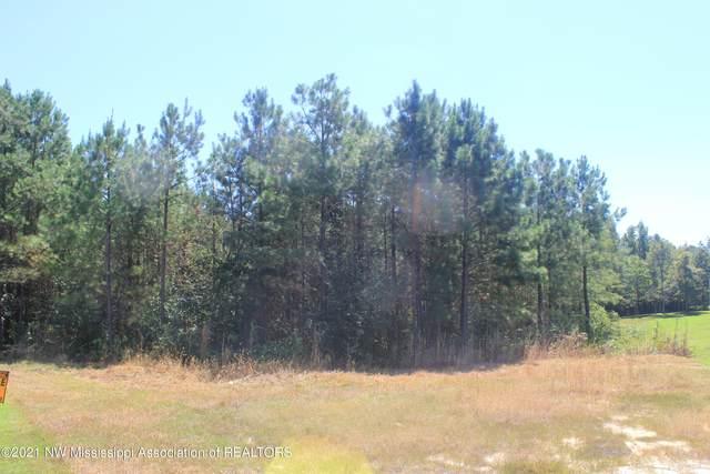 31 American Cove, Byhalia, MS 38611 (MLS #337778) :: The Home Gurus, Keller Williams Realty