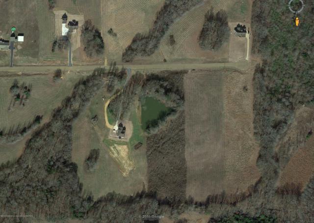 168 Luke Lane, Coldwater, MS 38618 (MLS #314934) :: Signature Realty