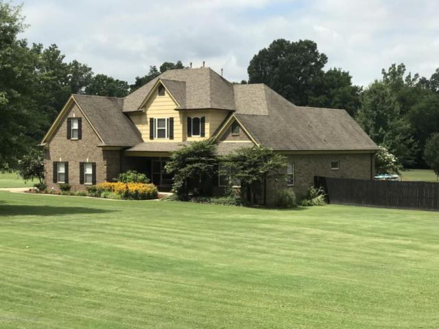 4033 Swinnea Road, Southaven, MS 38672 (MLS #317898) :: The Home Gurus, PLLC of Keller Williams Realty