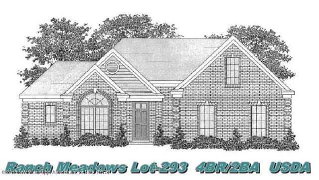 6520 Anna May Drive, Walls, MS 38680 (MLS #318403) :: Signature Realty