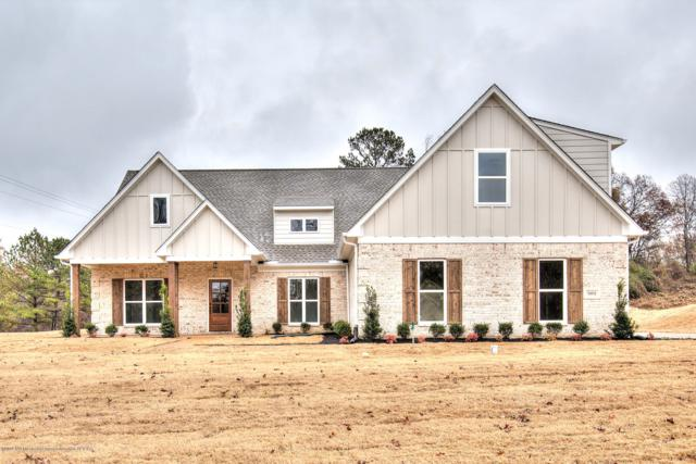 6919 Hawks View, Olive Branch, MS 38654 (MLS #319155) :: Signature Realty