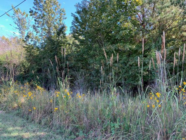 3 Woods Lane, Southaven, MS 38672 (#319543) :: JASCO Realtors®