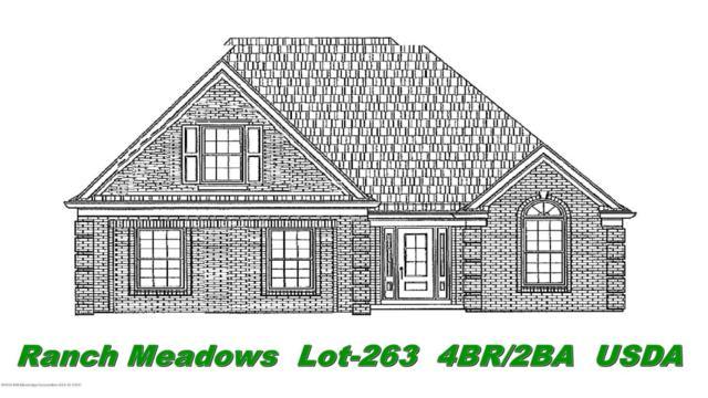 6439 Anna May Drive, Walls, MS 38680 (MLS #319660) :: Signature Realty